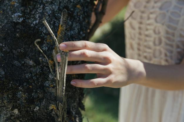 木の幹に触れる女性