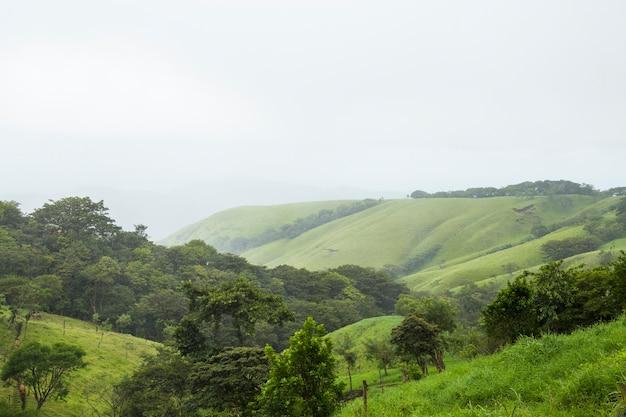 熱帯のコスタリカの静かな緑の山