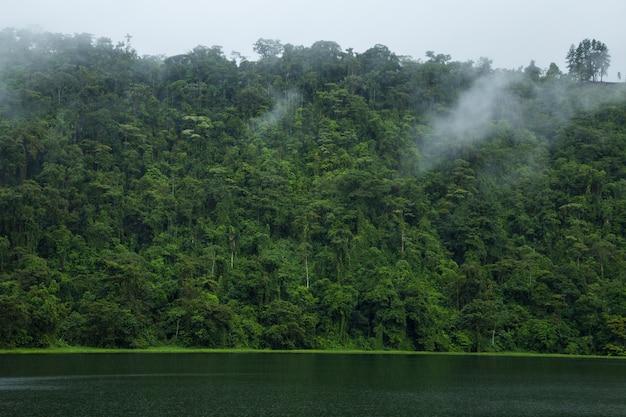 コスタリカの熱帯雨林の近くの牧歌的な川