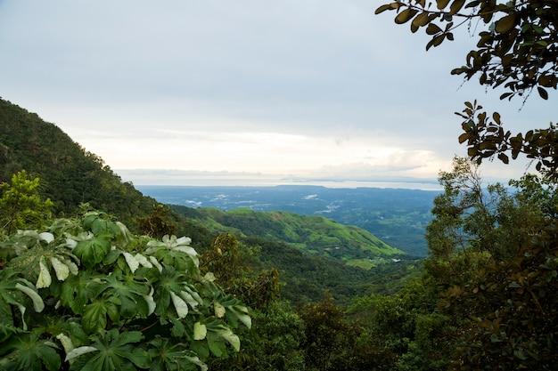 コスタリカの熱帯山の立面図