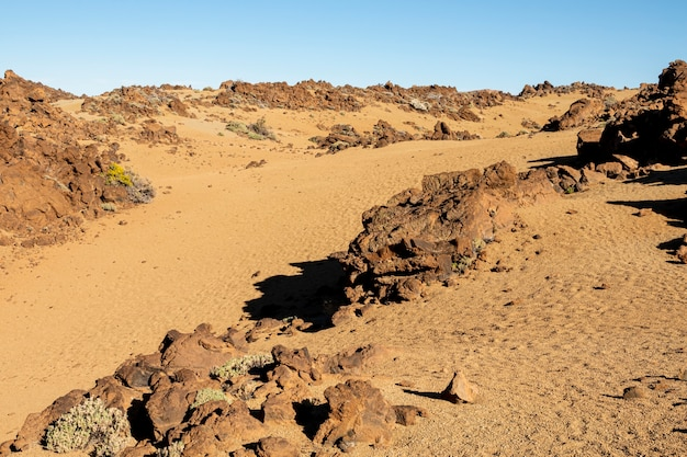 Сухой рельеф пустыни с камнями
