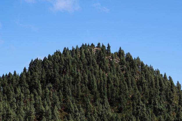 澄んだ青い空と山のピーク
