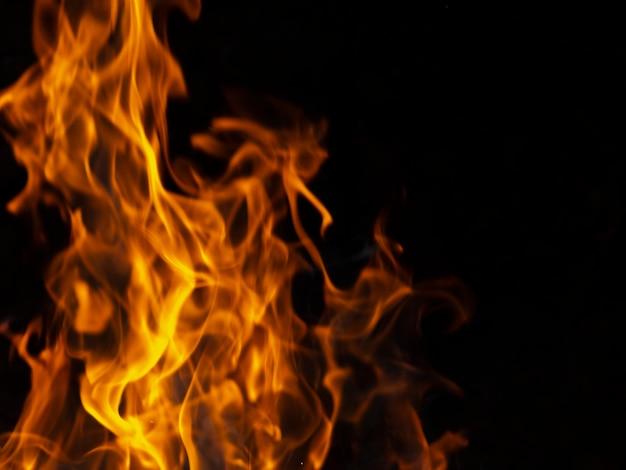 黒の背景に動的な活気のある炎