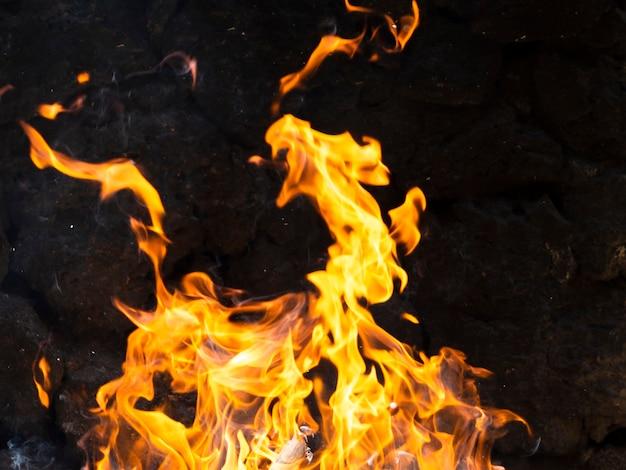 黒の背景に活気のある炎を移動