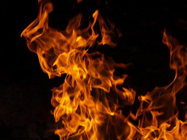 黒の背景に活気のある火を移動