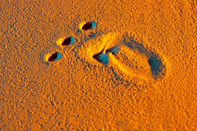 砂の上の人間の足の形のクローズアップ