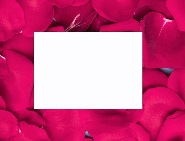 Белая бумага на фиолетовых цветочных лепестках копией пространства