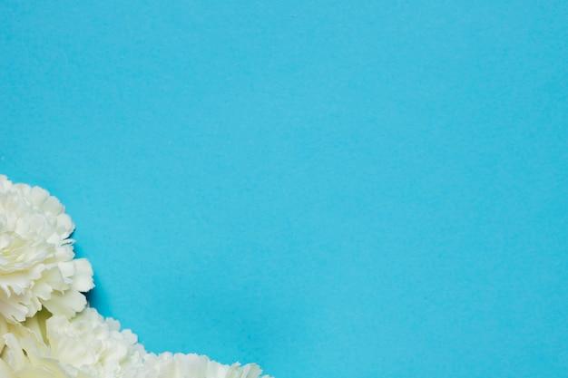 青色の背景に白い花コピースペース