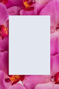 Белая бумага на фиолетовом фоне орхидей