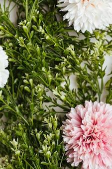 美しい花の背景トップビュー