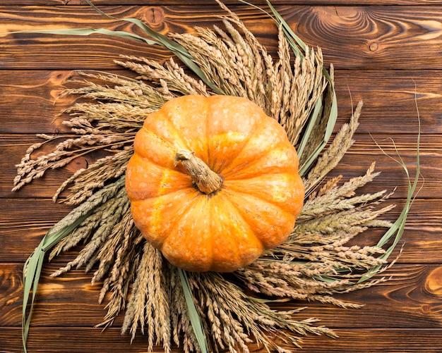 小麦の背景にトップビューカボチャ