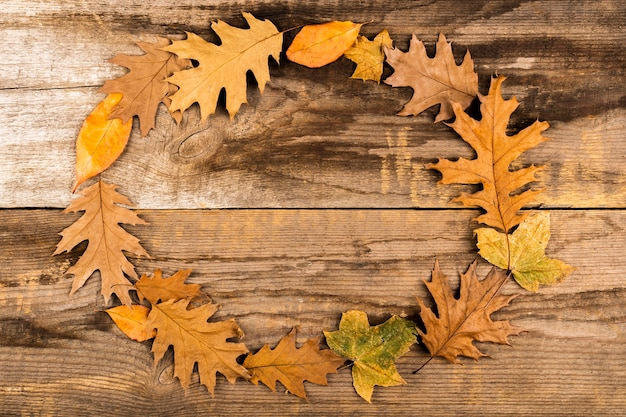 Красивая рамка из осенних листьев