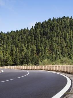 美しい木の風景と高速道路