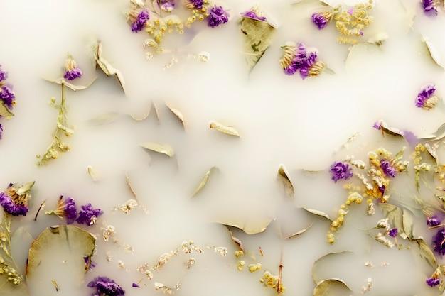 Плоские лежали нежные фиолетовые цветы в воде белого цвета