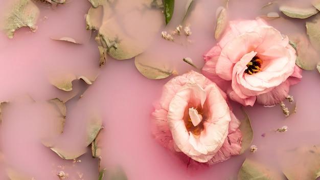 ピンクの水にピンクのバラ