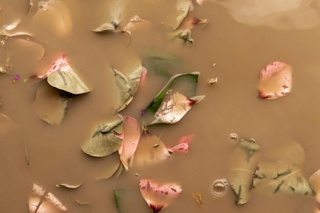 茶色の水にピンクの花びらと葉