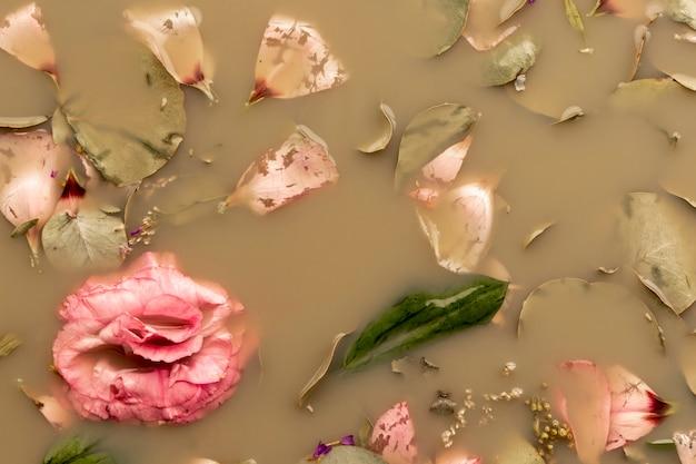 茶色の水にピンクのバラが横たわっていた