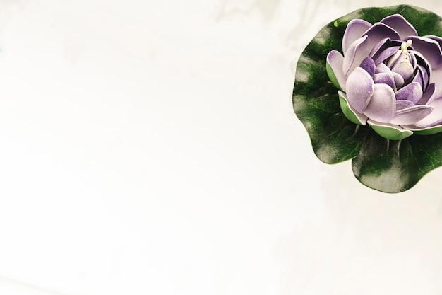Фиолетовая водяная лилия с копией пространства