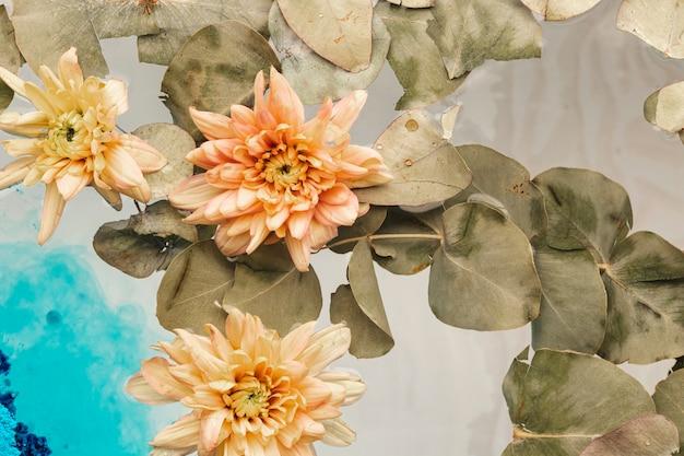 水に淡いオレンジ色の花