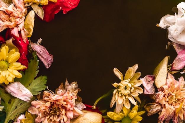 コピースペースと黒い水に複数の色の花