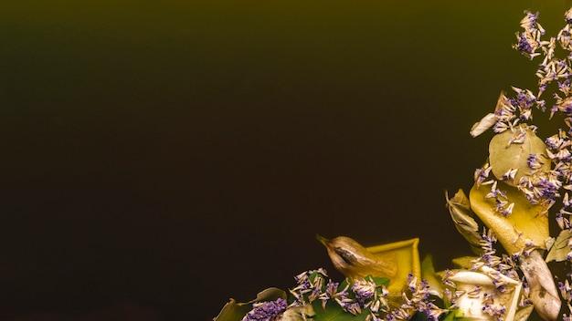 Маленькие фиолетовые цветы в черной воде с копией пространства