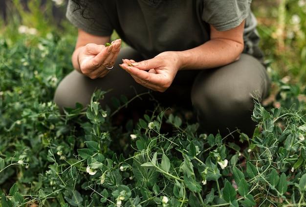 植物を気遣うクローズアップ女性