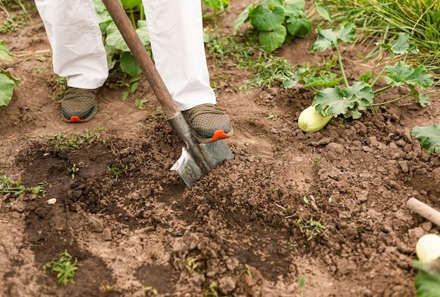 地面を掘るクローズアップ人