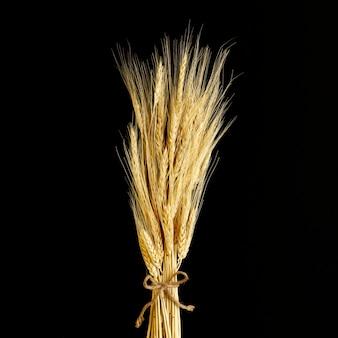黒い背景にクローズアップ小麦