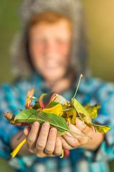 秋の葉を保持している若い男の子