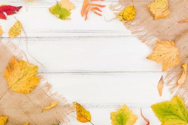Вид сверху минималистичный осенние листья кадр