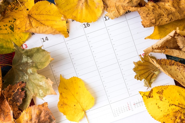 カレンダーに黄色の葉でトップビューの配置