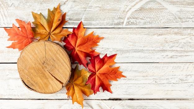 切り株と白い木製の背景の葉