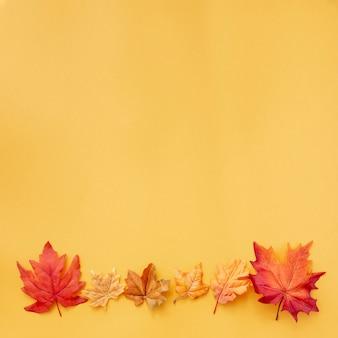 黄色の背景にカラフルな葉