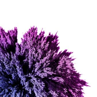 白い背景に分離された紫色の金属シェービングのクローズアップ
