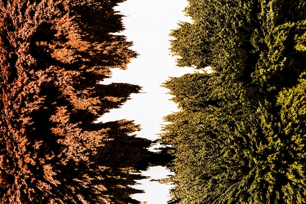 緑と茶色の磁性金属シェービング背景の分離