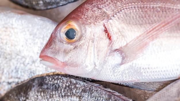 市場での冷凍魚のクローズアップ