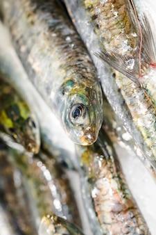 新鮮な魚のスタックのクローズアップ