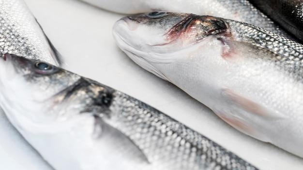 白いテーブルに新鮮な魚