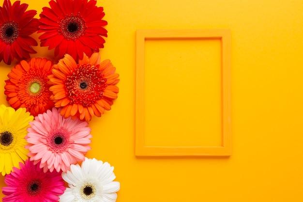 オレンジ色の背景上のフレームとガーベラの花