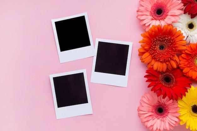 ガーベラのデイジーの花を持つビンテージ写真