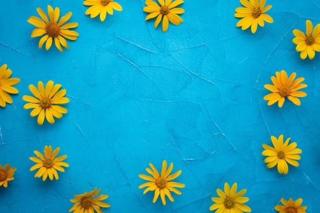 スペインのカキアザミの花のフレーム