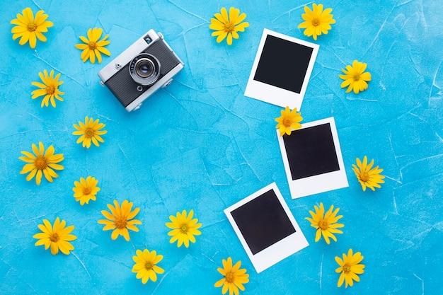 ポラロイドカメラとスペインカキアザミの写真