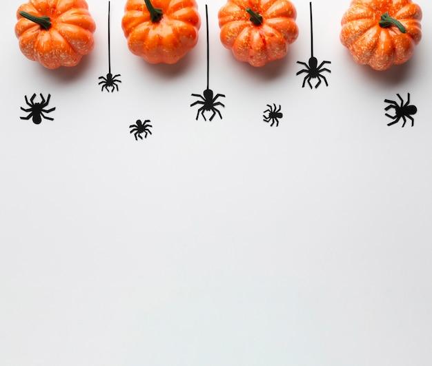 ハロウィンのカボチャと不気味なクモ