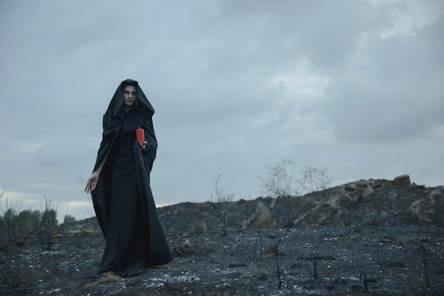 荒野の魔女男のロングショット