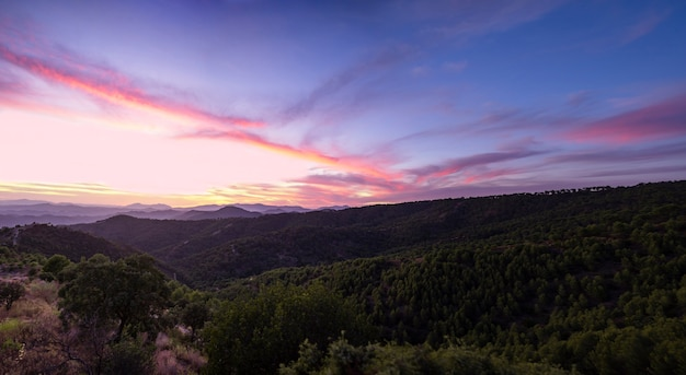 Красивое небо на голубых тонах с лесом