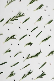 テーブルに広がるオリーブの葉