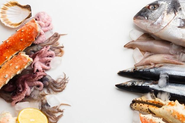 Вид сверху свежие морепродукты на столе