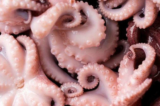 Крупный план свежего и вкусного осьминога
