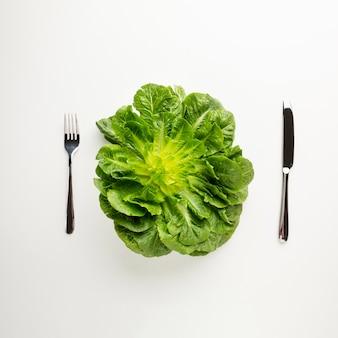 白い背景の上の健康的な緑のレタス