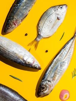 Вид сверху микс свежей рыбы с приправами